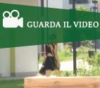 VIDEOGUARDA